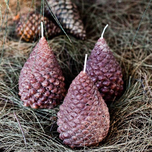 Set of 3 Large Pinecone Candles