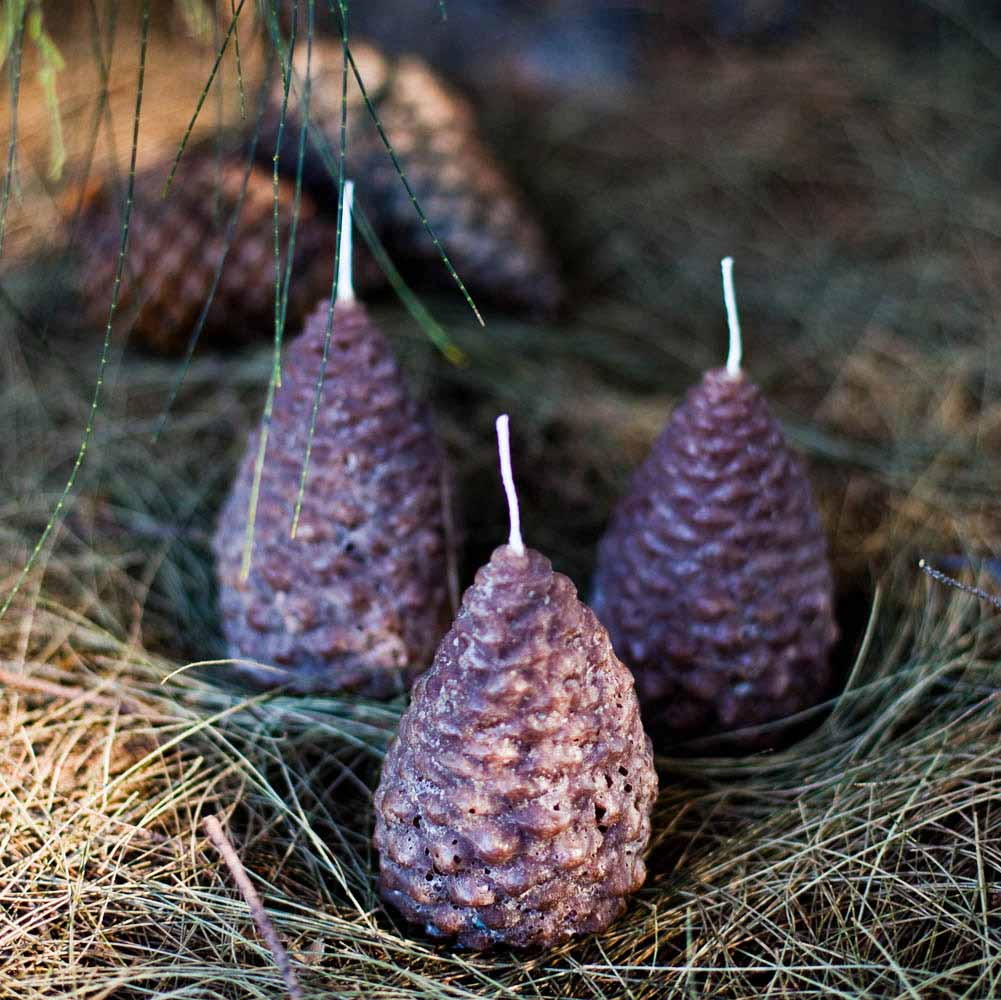 Pine Cone Candles Pinecone Christmas Candles